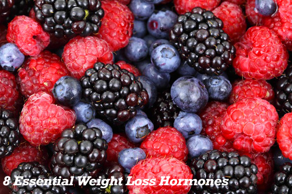 8 Essential Weight Loss Hormones