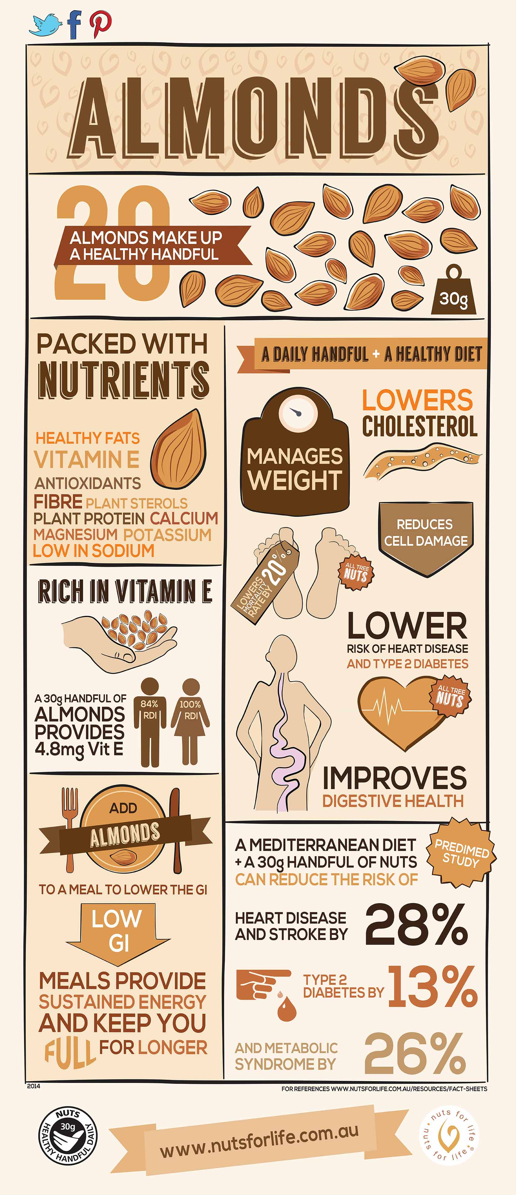 Almonds Infographics