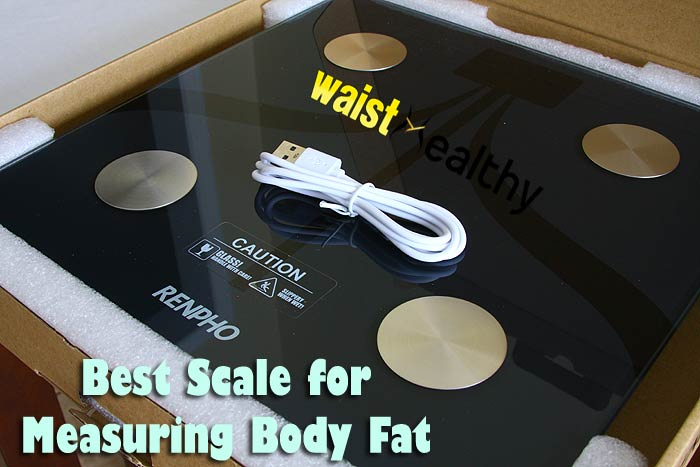 Best Scales for Measuring Body Fat