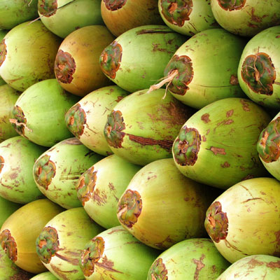 Coconut: Saturated Fat